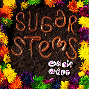 The Sugar Stems
